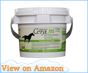 Cetyl-M Joint Action Formula for Horses review