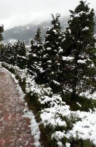 neige_sapa7