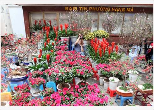 marche des fleures de la vielle ville1