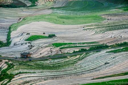 rizieres-en-terrasses-a-Y-Ty1