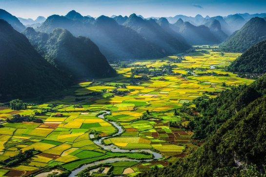le vietnam.jpg