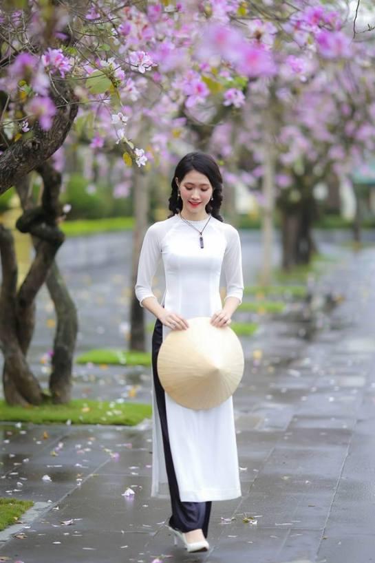 visiter hanoi a voir en mars fleur