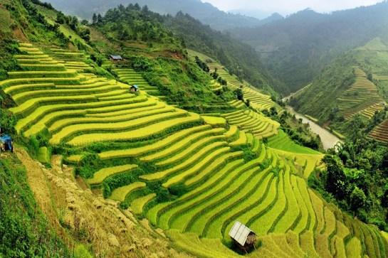 voyage vietnam paysage.jpg