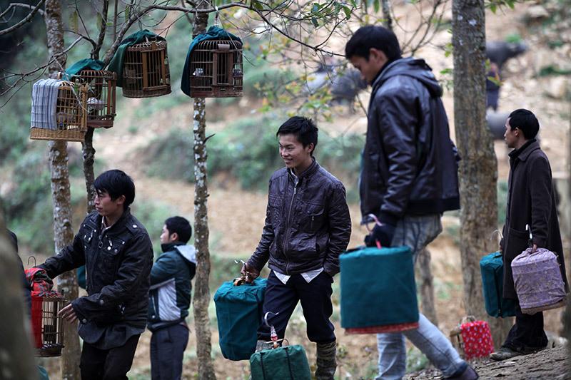 visite marches ethniques nord vietnam oiseaux agrement.jpg