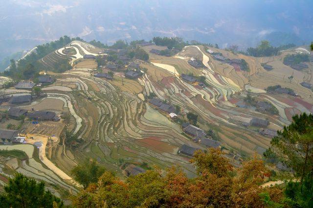 visiter ha giang au printemps village phung.jpeg