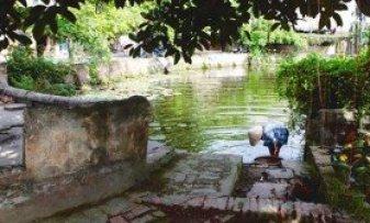 Le village de Thuong Hôi de la commune de Tân Hôi, en banlieue de Hanoi, compte trois puits séculaires