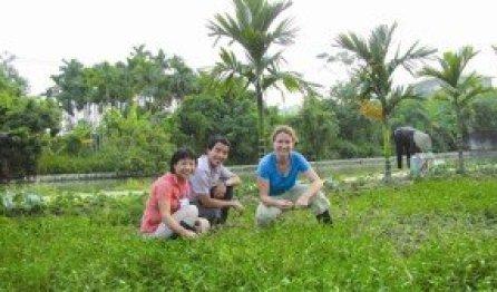 les touristes étrangers se transforment en véritables agriculteurs