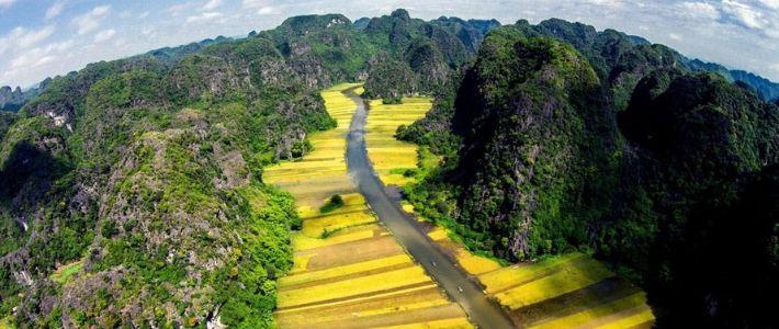 Visite Ninh Binh en saison de récolte