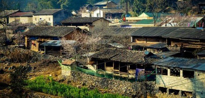 Plateau Dông Van