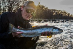 RaintroutFly-kust-spring-2017-3