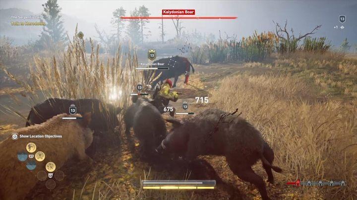 Время от времени враг будет вызывать орду второстепенных кабанов, чтобы помочь ему в битве - Калидонский кабан (Фокис) - Охота на семью зверей в ассасинах. Символика веры - Охота на семью зверей - Игра Assassins Creed Odyssey Game Guide