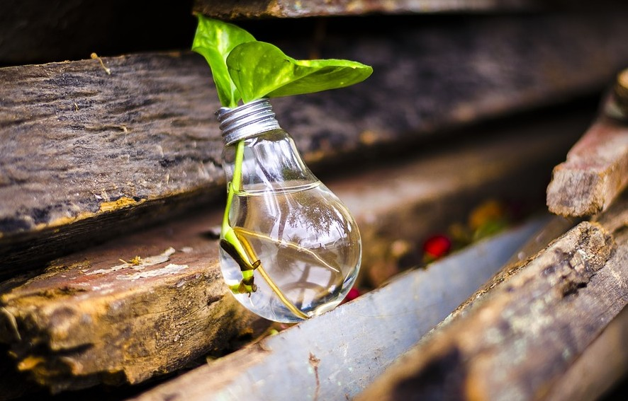 chinese-new-year-bulb-with-leaf