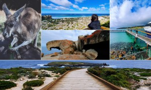 Kangaroo Island Cover Photo Guidesify Itinerary Singapore