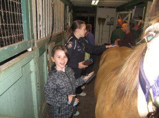 Barn Day with families, cats, horses, goats, a rabbit and a pony