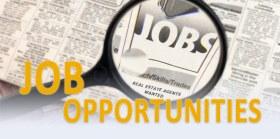 Job Listing:  Project Portfolio Anayst