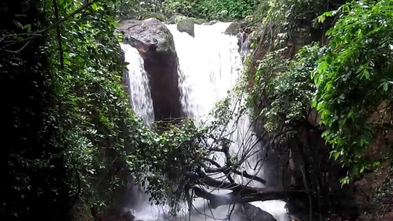 Verna Springs of Kesarval, Goa