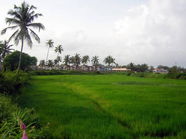 Benaulim Village