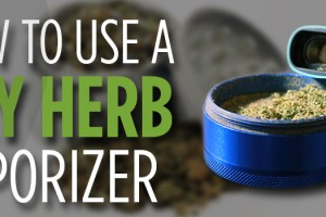 using a dry dry herb vaporizer
