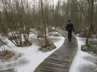 Natuurgebied Olens Broek