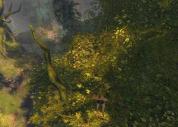 Verdant Brink Dive Master Trees
