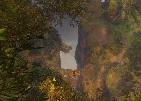 Verdant Brink Dive Master Trees1