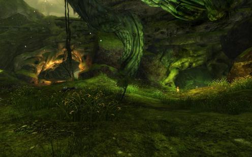 Vinetooth Den Entrance