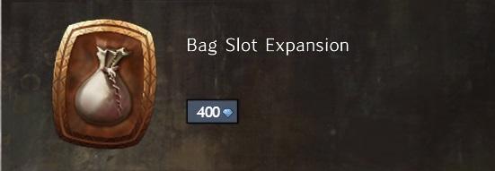 Bag Slot