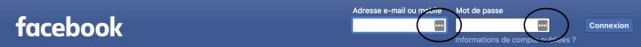 emplacement de l'icône Lastpass dans le login du compte