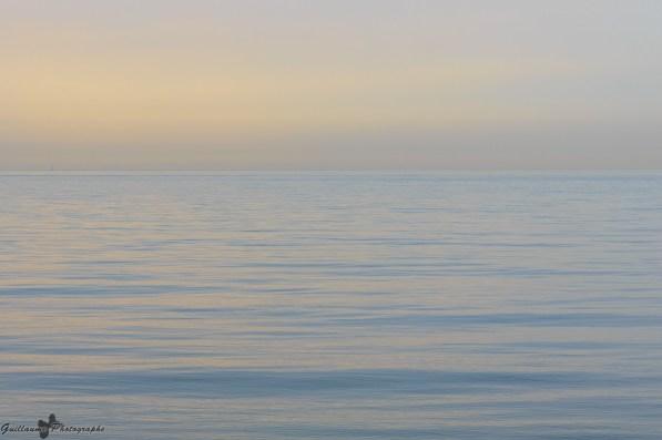 Sea Dream