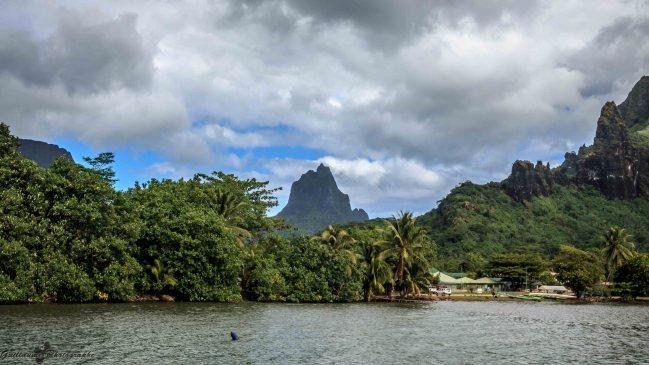 Moorea - vue du mont Tohiea