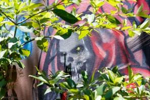 Street-Art_Guadeloupe-2019-32