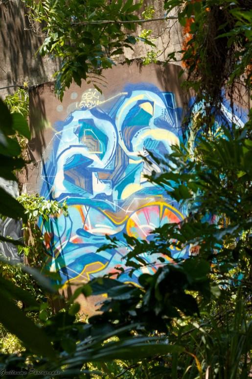 Street-Art_Guadeloupe-2019-35