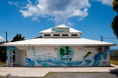 Street-Art_Guadeloupe-2019-64