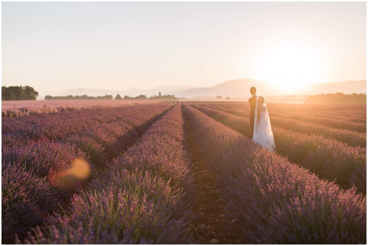 Lavender fields, shooting couple, sunrise