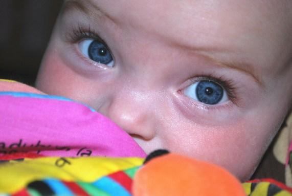 Some amazing eyes!