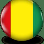 guineeaico