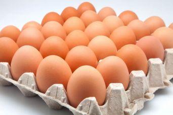 El huevo, un alimento que cuida tu cerebro