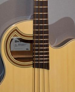 E-Bass im American Guitar Shop 2222