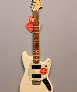 E-gitarren im American Guitar Shop 6