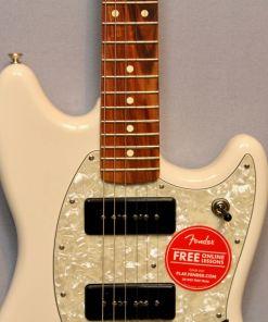 E-gitarren im American Guitar Shop 5