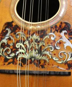 Mandoline in Berlin American Guitar Shop