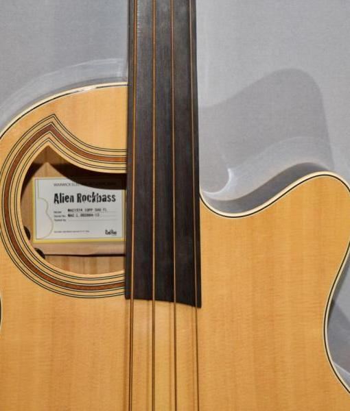 Akustikbass im Guitar Shop