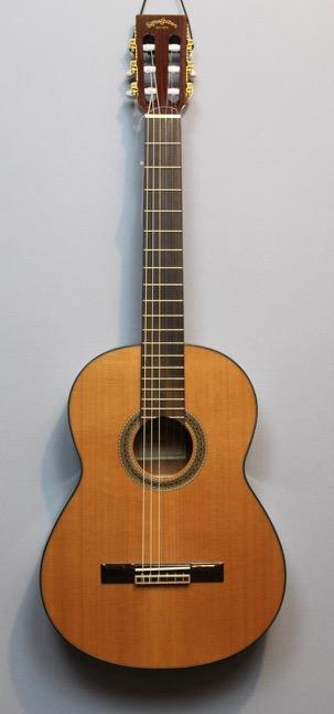 Guitar Shop sigma Guitars