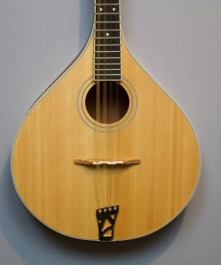 RIMA-40 Richwood Master Series Irish Mandola