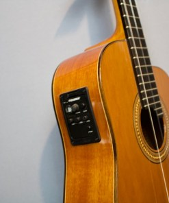Der American Guitar Shop das Fachgeschäft für Mandolinen in Berlin, F-Style Mandolinen, Neapolitanische Mandolinen, Irish Folk Mandolinen und A Style Mandolinen