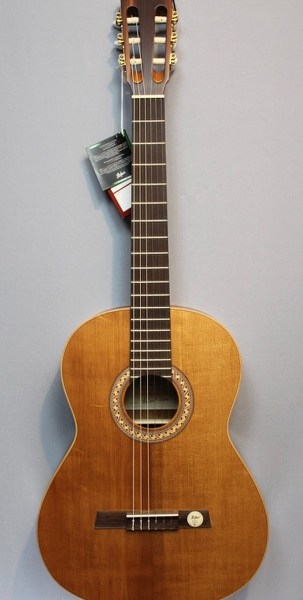 Höfner HGL8 Green Line Konzertgitarre3