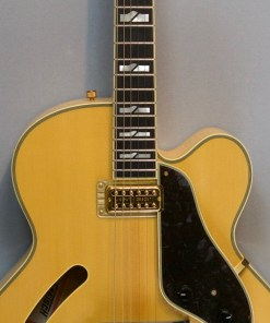 Gretsch Guitars G6040