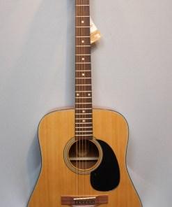 Blueridge BR-40 Westerngitarre2