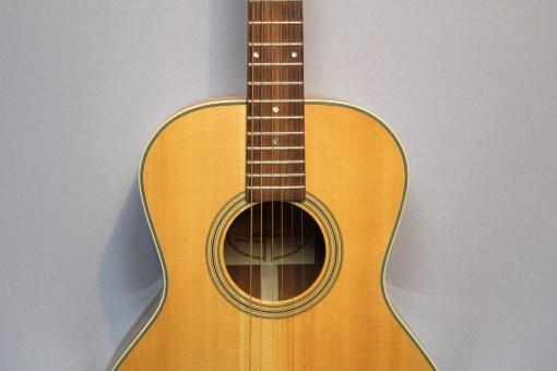 Levinson LS-23 Westerngitarre