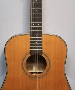 Stanford Platinum D32 Westerngitarre